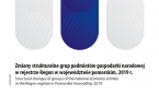 Structural changes of groups of the national economy entities in the Regon register in Pomorskie Voivodship, 2019 Foto